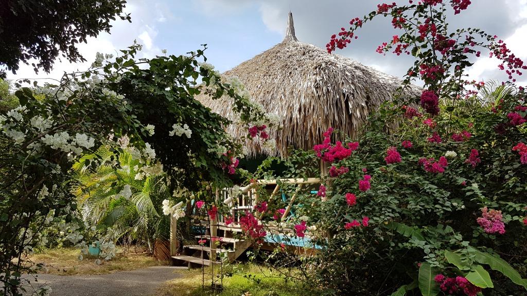 Eco resort Curacao