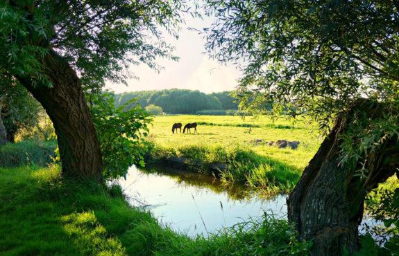 duurzamer reizen binnen NL