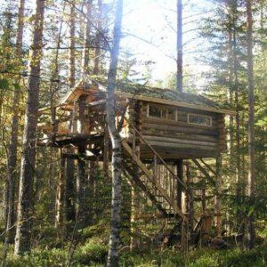 Slapen in boomhut Zweden (Vansbro)
