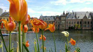De leukste grote steden van Nederland