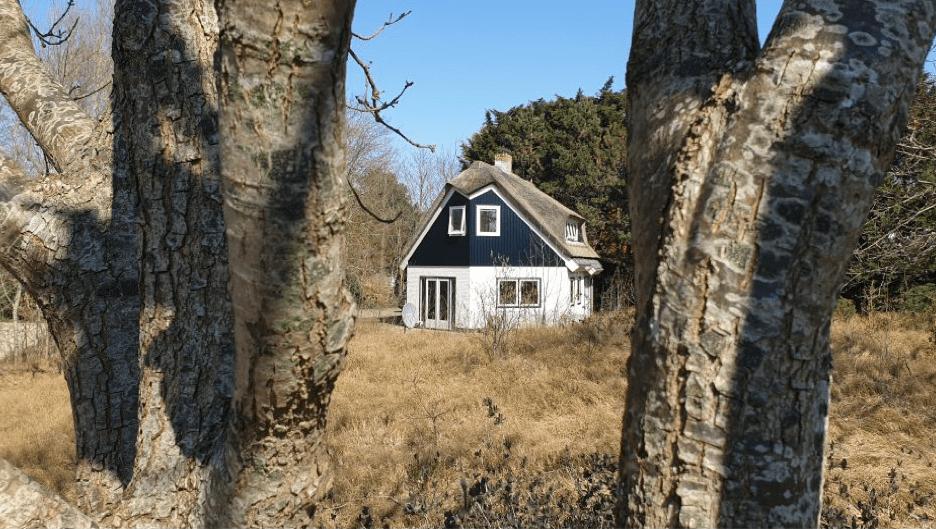 huisje in de natuur op texel